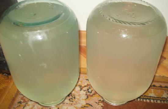 домашний березовый сок
